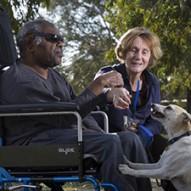 Man feeding dog in park setting