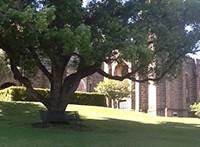Peaceful grounds of Catholic Education Centre