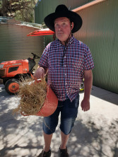 Tim working at the Swan Valley Cuddly Animal Farm